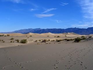 Sand Dunes in Mesquite Flat, Death Valley