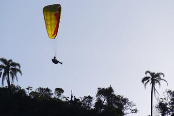 Paraglider über Palmen