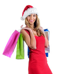 Santa girl bear diverse bags,isolated on white