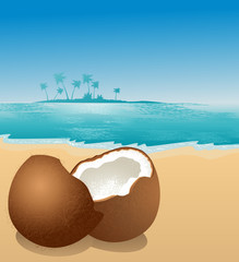 Coconut on the beach, vector illustration