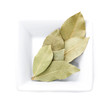Bay leaf, clipping path