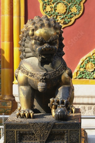Lioness in Forbidden City