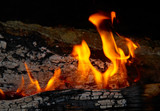 Flame tips on the firewood. poster