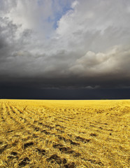 The thunder-storm in a countryside in state of Montana begins