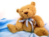 Teddy Bear On White And Blue
