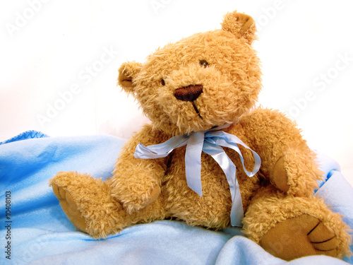 Teddy Bear On White And Blue - 10408103