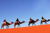 Caravan in Sahara desert poster