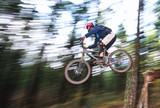 A skilled mountain biker. poster