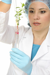 A scientist botanist dispenses  a solutioninto a test tube.