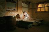 Beautiful Bride in a Grungy Bathtub in a Basement poster