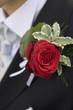 Rose am Revers