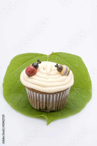 cupcake decorated with a bee and a ladybug.