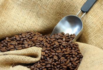 Coffee Beans, Burlap and Scoop