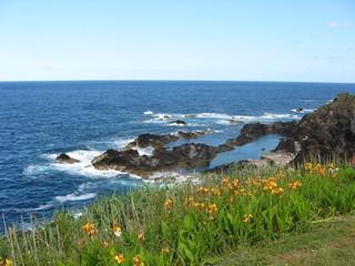 Natural Beach Azores Portugal