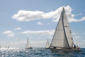 bâteaux boat 2