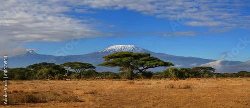 canvas print picture Kilimanjaro Wide