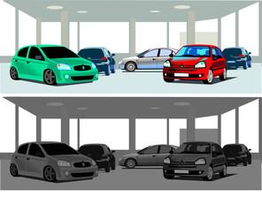concessionaria di auto 1