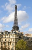 Eifel tower view from the paris roofs poster