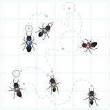 A group of ants organizing their affairs and foraging methods. poster