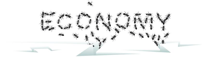 Economic Ants