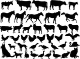 farm animal silhouette colection - vector