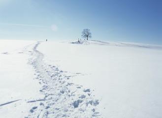 Deutschland, Winterlandschaft