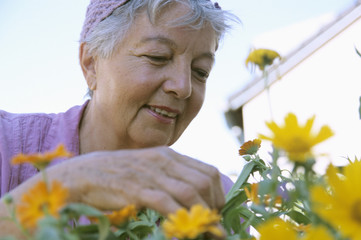 Senior woMann gardening,
