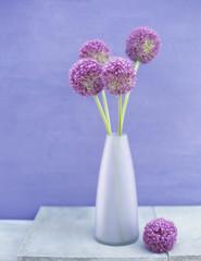 Zwiebel Blume (Allium giganteum) in der Vase