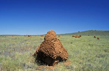 Australien, Termitenhügel