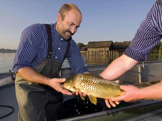 Deutschland, Bodensee, Fischer bei der Arbeit