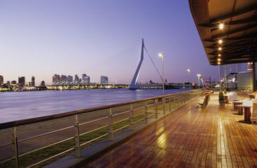 Rotterdam, Erasmus-Brücke aus Koninginnenhoofd, Niederlande