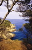 View of sea from mountain top, near Tossa de Mar, Costa Brava, Catalonia, Spain