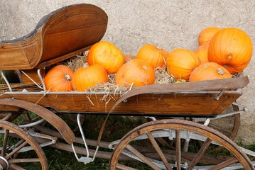 Pumpkins in a carriage. Swedish harvest festival decoration.