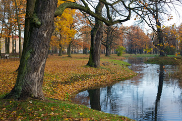 Colorful trees by side of lake in autumn scene.