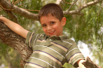 Young boy plays in a tree