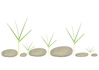 Bamboo Grass and Six Pebbles