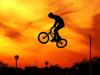 bicycle freestyle