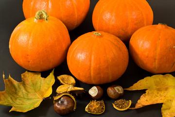 Kürbisse, pumpkins