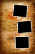 Three blank photos on a grungy wooden background