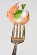 Leinwanddruck Bild - delicious fresh cooked shrimp prepared
