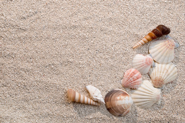 Frame of sea shells on sand