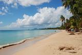 Martinique - plage des Salines poster