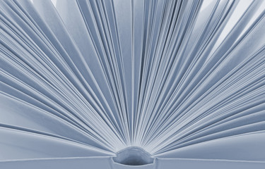 Open  book with pages monochrome background