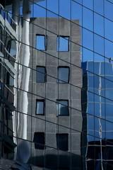 immeubles,reflet bleuté