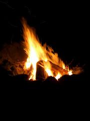 Closeup of camp fire or bonfire built in evening