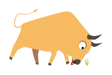 Cute yellow bull eating grass, symbol of new year 2009, vector