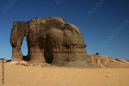 Aluminium Algerije Un éléphant de pierre dans le désert