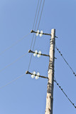 Electrical post with power cables and insulators poster