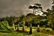 Friedhof in County Cork, Irland