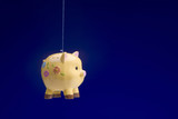 Piggy Bank Flying